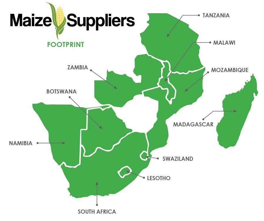 Africa's #1 Maize Supplier - Bulk GMO and Non GMO Yellow & White