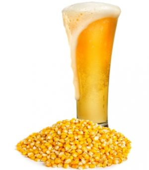 maize-instant-beer-image